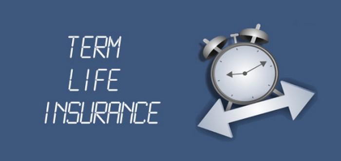 asuransi jiwa berjangka1