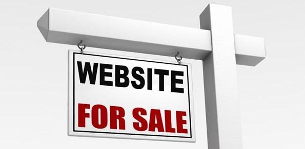 purchased website on flippa