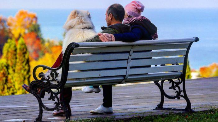 Autojuht mees ja naine ja koer