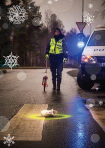 Politsei kaart 2015