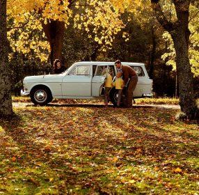 5818_Volvo_P220_Amazon