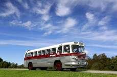 ZIS buss
