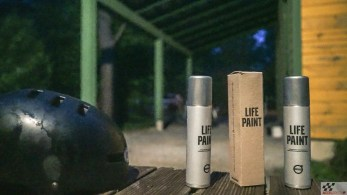 lifepaint-2