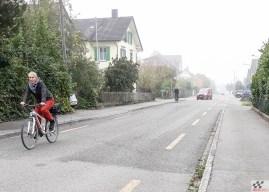 Budõlinid Šveitsis: harjumatu, aga tõsi, ka jalgrattur on inimene!