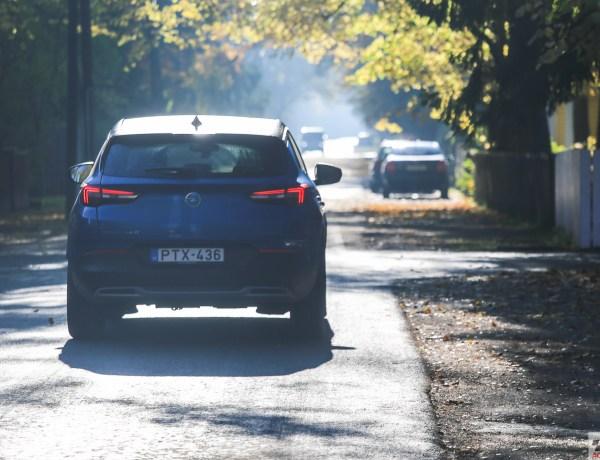 Kolm sõltumatut uuringut: teeäärne rohelus vähendab stressi ja liiklusraevu
