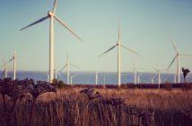 tuulepargid kliimamuutust