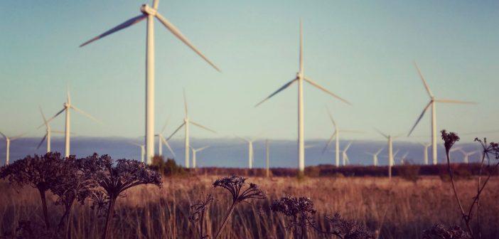 Lugeja küsib: Kas on võimalik, et tuulepargid tekitavad kliimamuutust?