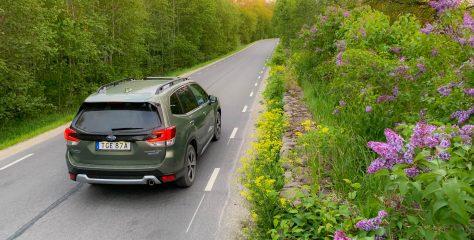 Subaru Forester e-Boxer: moodsa metsavahi päris auto