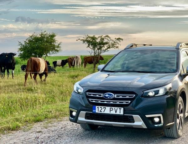 Uus Subaru Outback on nutikas ja sõidab hiirvaikselt