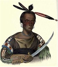 The Sioux, or Dacotah