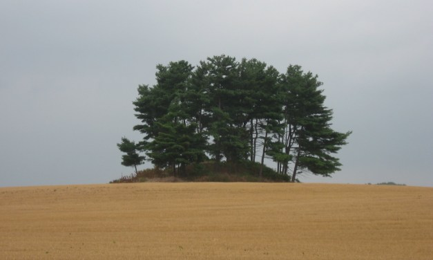 Mounds and Fortifications