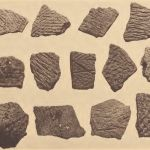 Potsherds, from Windsor Shades, New Kent County and from site of Apocant, Chickahominy County, Va