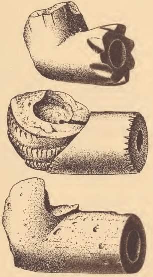 Pamunkey earthenware pipes.