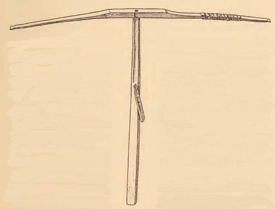Mattaponi cross-bow