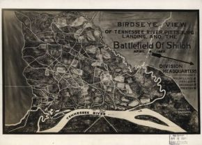 The Battlefield at Shiloh