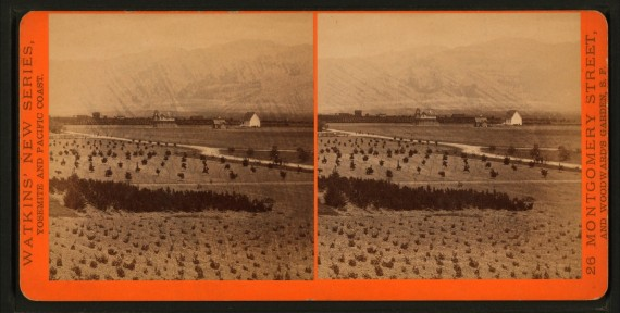 Stereoscopic views of Los Angeles and Ventura Counties and vicinity. ca. 1880