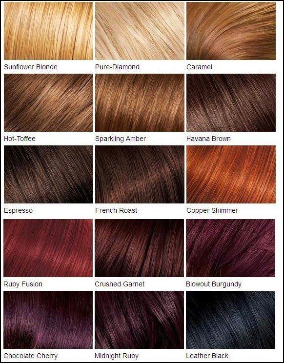 Diffrentes Types De Couleurs De Cheveux Roux Chtains Et