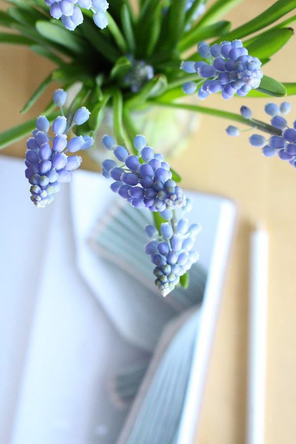 Blauwe druifjes in glazen vaas met agenda en potlood - via Accessorize your Home
