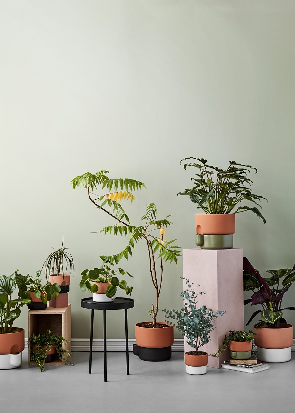 Planten in zelfwaterende terracotta bloempotten met geglazuurde onderzijde in groen, wit of bruin - via Accessorize your Home