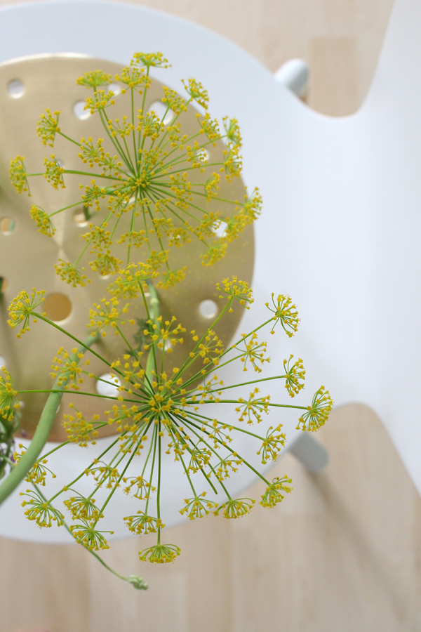 Bovenaanzicht van de Ikebana vaas met heldergele schermen van dille op een witte eetkamerstoel - via Accessorize your Home