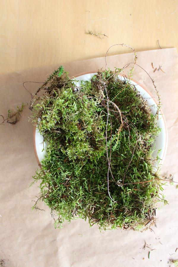 Flatlay van bord met fris groen mos op een houten tafel - via Accessorize your Home
