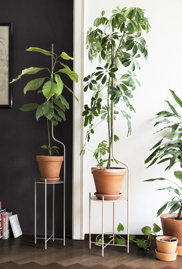 Plantenstandaards van metaal met extra verlengstukken ter ondersteuning - via Accessorize your Home