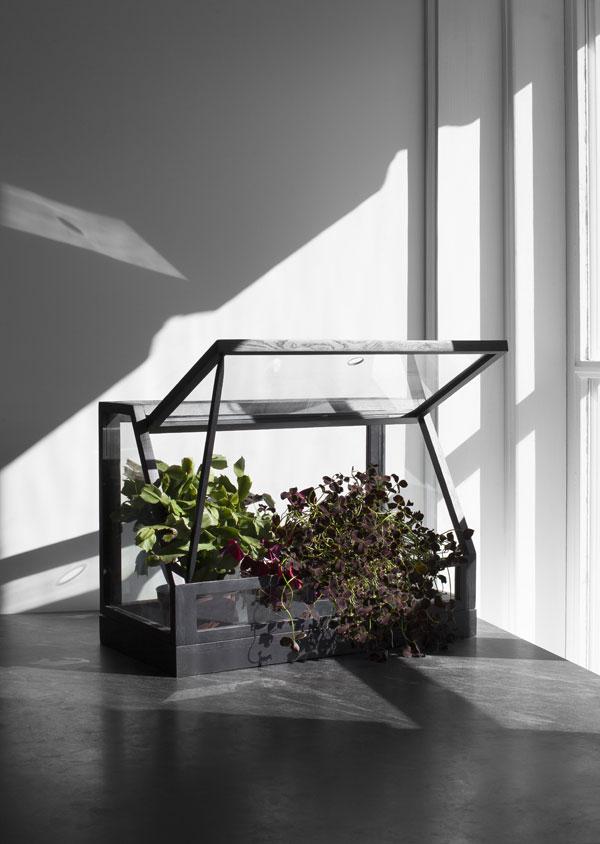 Mini kweekkas van zwart hout op zwart aanrechtblad - via Accessorize your Home