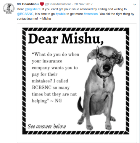 Micro-Influencer Dog Solves Problems