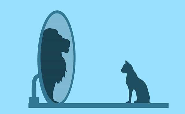 अपना आत्मविश्वाश कैसे बढ़ाये, खुद पर भरोसा कैसे करे, Self confidence level कैसे बढ़ाये