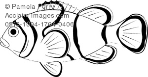 clip art image of a clown fish coloring page acclaim stock