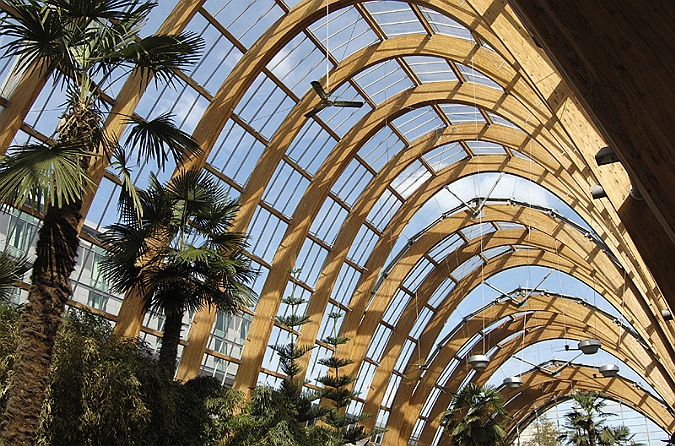 Commercial Photographer  Winter Gardens  Sheffield  Interior  UK