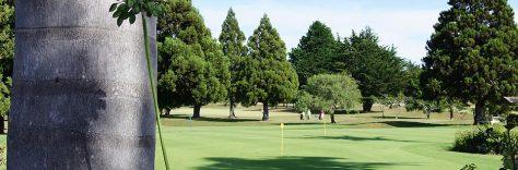 Kerikeri Golf