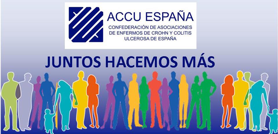 portadadefinitiva Accu España