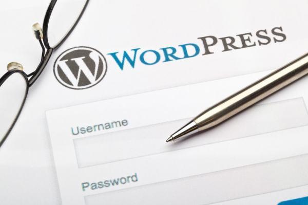 Beginner's Guide to Start WordPress Blog