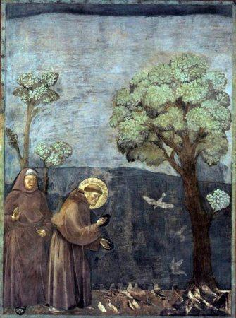 Francois d'Assise prêchant aux oiseaux par Giotto