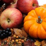 Ace Fit Fit Life Your Healthy Fall Food Line Up