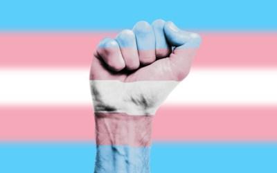 transgénero-Associação-ACEGIS
