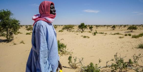 climate change and land UN-ACEGIS