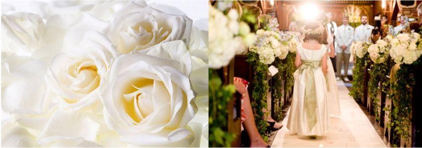 Rosas para decoração de casamento