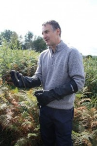 reptile survey hereford