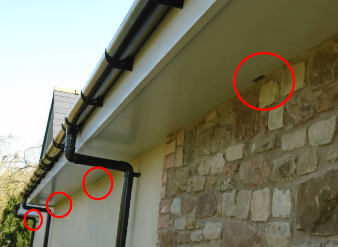 Soffit Box Bat Mitigation_Monmouthshire Garage Conversion