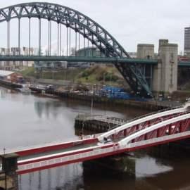 Ecology Survey Newcastle