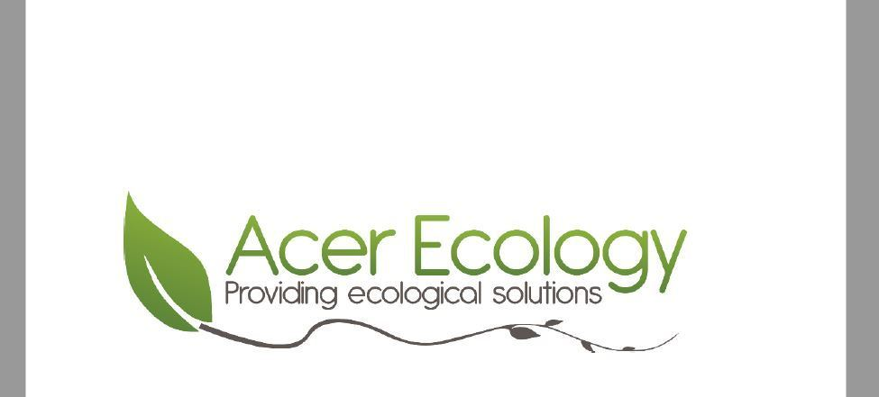 Acer Ecology Report