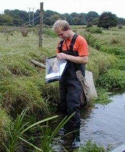 Ecology Surveyor