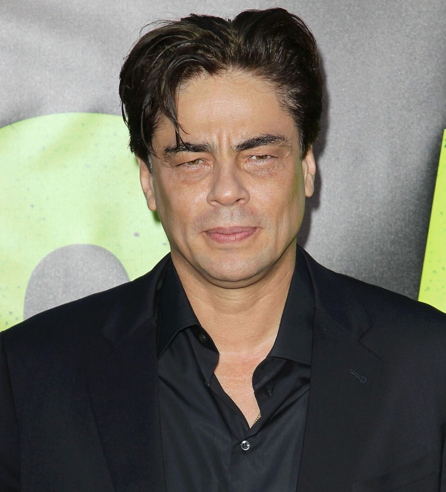 Benicio Del Toro Girlfriend Sophie