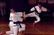 Jiu Jitsu vs Karate