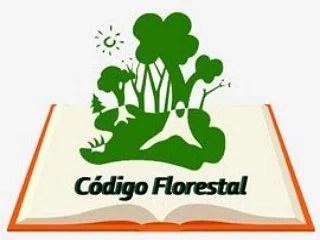 STF reforma acórdão do STJ sobre aplicação do Novo Código Florestal a casos pretéritos.
