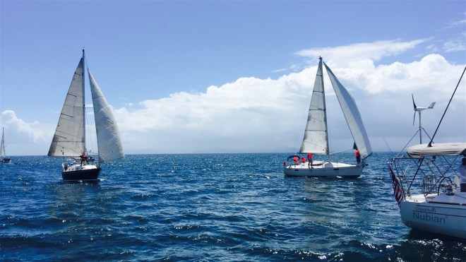Dominican Republic, Samana, Puerto Bahia, regatta, sailing, abordo, wing on wing, sailboat