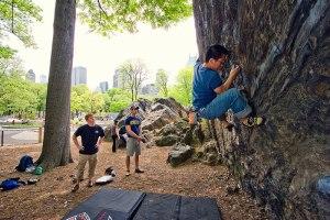 Séjour sportif aux USA : top 4 des activités à faire à New York