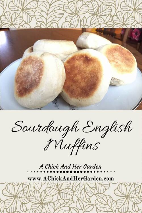 sourdough-english-muffins-pin